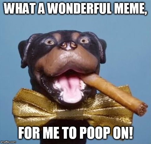 who flung poo | WHAT A WONDERFUL MEME, FOR ME TO POOP ON! | image tagged in triumph the insult comic dog | made w/ Imgflip meme maker