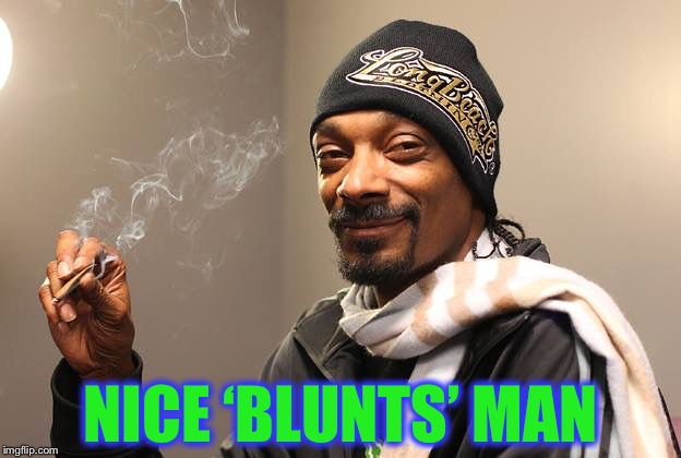 Snoop Dogg | NICE 'BLUNTS' MAN | image tagged in snoop dogg | made w/ Imgflip meme maker