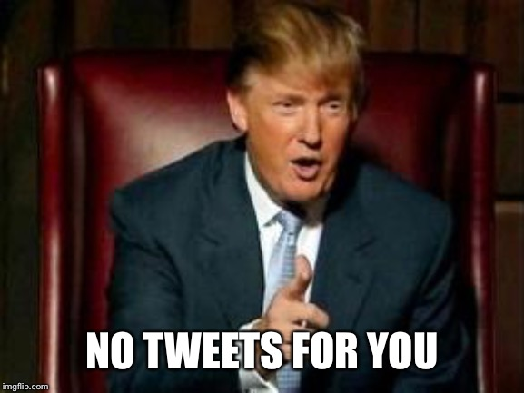 Donald Trump | NO TWEETS FOR YOU | image tagged in donald trump | made w/ Imgflip meme maker