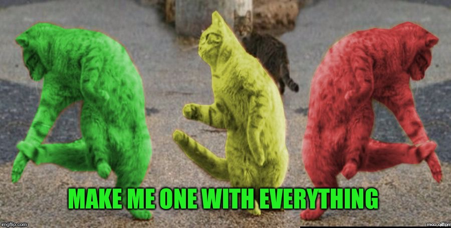 Three Dancing RayCats | MAKE ME ONE WITH EVERYTHING | image tagged in three dancing raycats | made w/ Imgflip meme maker