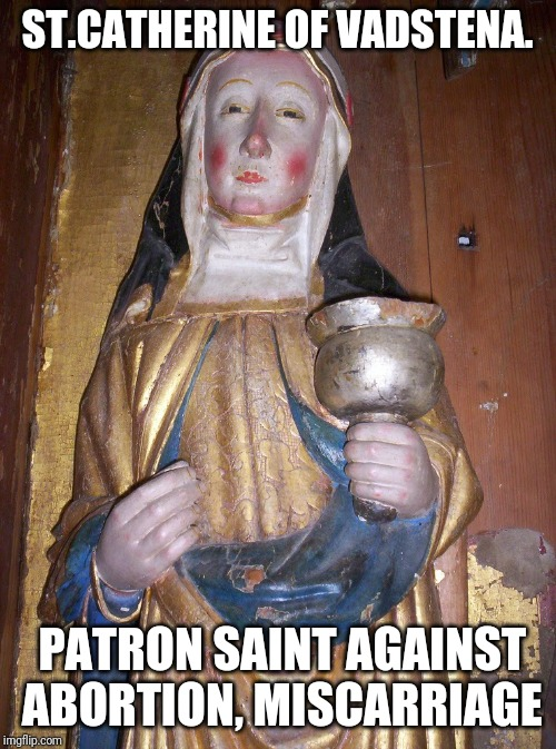 Patron Saint | ST.CATHERINE OF VADSTENA. PATRON SAINT AGAINST ABORTION, MISCARRIAGE | image tagged in catholic,holy spirit,holy bible,abortion,baby,murder | made w/ Imgflip meme maker