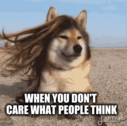 Going with the flow... | WHEN YOU DON'T CARE WHAT PEOPLE THINK | image tagged in that face you make,that face,opinions | made w/ Imgflip meme maker