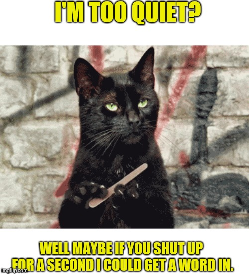Creepy Condescending Cat | I'M TOO QUIET? WELL MAYBE IF YOU SHUT UP FOR A SECOND I COULD GET A WORD IN. | image tagged in motor mouths,shut up,narcissist,self absorbed | made w/ Imgflip meme maker
