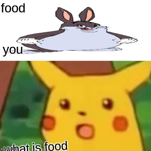 Surprised Pikachu |  food; you; what is food | image tagged in memes,surprised pikachu | made w/ Imgflip meme maker