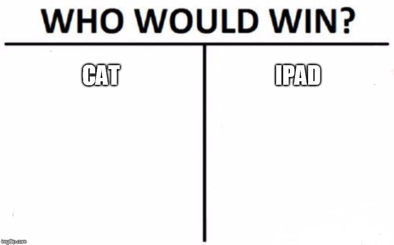 Who Would Win? Meme | CAT IPAD | image tagged in memes,who would win | made w/ Imgflip meme maker