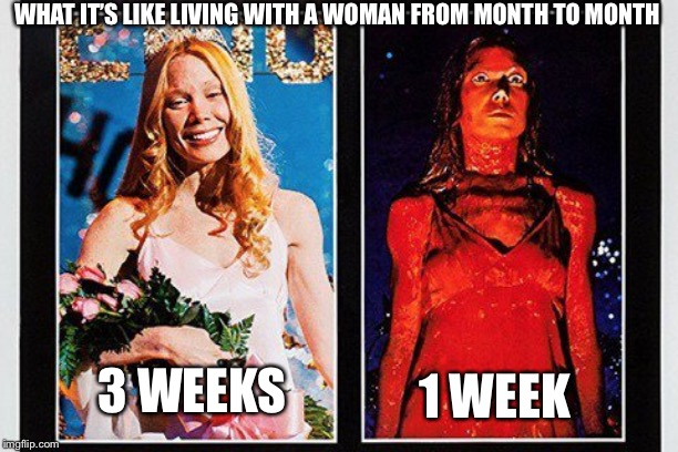WHAT IT'S LIKE LIVING WITH A WOMAN FROM MONTH TO MONTH 3 WEEKS 1 WEEK | made w/ Imgflip meme maker