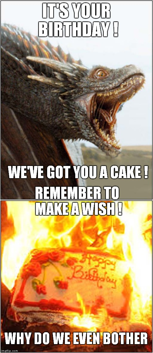 Dragons Have Feelings Too | IT'S YOUR BIRTHDAY ! WE'VE GOT YOU A CAKE ! REMEMBER TO MAKE A WISH ! WHY DO WE EVEN BOTHER | image tagged in fun,dragons,birthdays | made w/ Imgflip meme maker