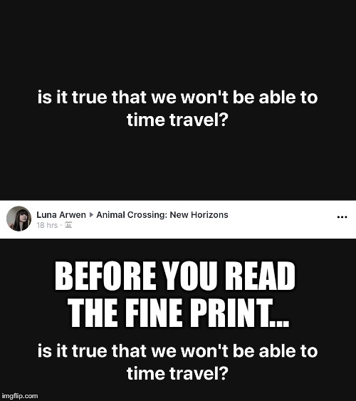 Fine Print | BEFORE YOU READ THE FINE PRINT... | image tagged in time travel,animal crossing | made w/ Imgflip meme maker