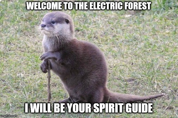 Sage Otter | WELCOME TO THE ELECTRIC FOREST I WILL BE YOUR SPIRIT GUIDE | image tagged in spirit animal | made w/ Imgflip meme maker