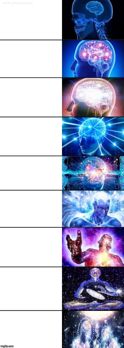 9-Tier Expanding Brain | image tagged in 9-tier expanding brain | made w/ Imgflip meme maker