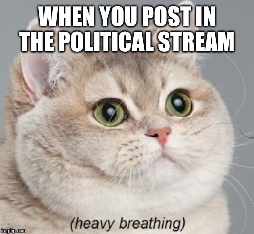 Heavy Breathing Cat Meme | WHEN YOU POST IN THE POLITICAL STREAM | image tagged in memes,heavy breathing cat | made w/ Imgflip meme maker