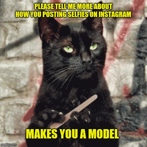 Two words I hate, selfies and Instagram |  PLEASE TELL ME MORE ABOUT HOW YOU POSTING SELFIES ON INSTAGRAM; MAKES YOU A MODEL | image tagged in narcissism,me me me,instagram | made w/ Imgflip meme maker