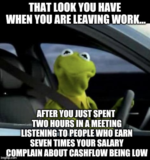 When its your fault cash is low | THAT LOOK YOU HAVE WHEN YOU ARE LEAVING WORK... AFTER YOU JUST SPENT TWO HOURS IN A MEETING LISTENING TO PEOPLE WHO EARN SEVEN TIMES YOUR SA | image tagged in kermit driving | made w/ Imgflip meme maker