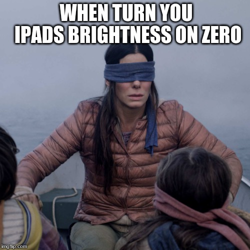 Bird Box | WHEN TURN YOU IPADS BRIGHTNESS ON ZERO | image tagged in memes,bird box | made w/ Imgflip meme maker