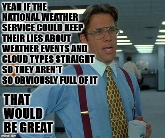 That Would Be Great | YEAH IF THE NATIONAL WEATHER SERVICE COULD KEEP THEIR LIES ABOUT WEATHER EVENTS AND CLOUD TYPES STRAIGHT SO THEY AREN'T SO OBVIOUSLY FULL OF | image tagged in memes,that would be great | made w/ Imgflip meme maker