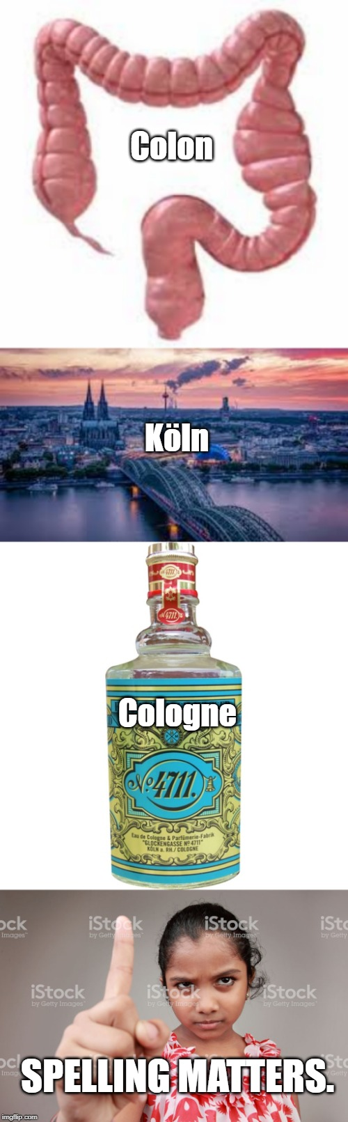 Colon SPELLING MATTERS. Köln Cologne | image tagged in colon,cologne,spelling,koln | made w/ Imgflip meme maker
