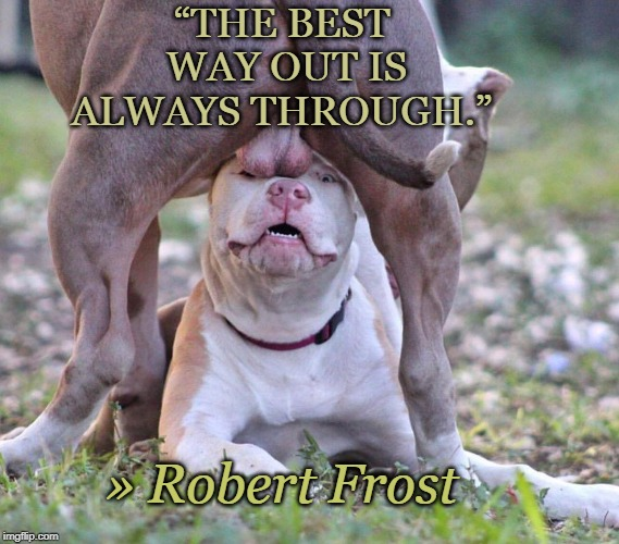 "Motivational Quotes | ""THE BEST WAY OUT IS ALWAYS THROUGH."" » Robert Frost 