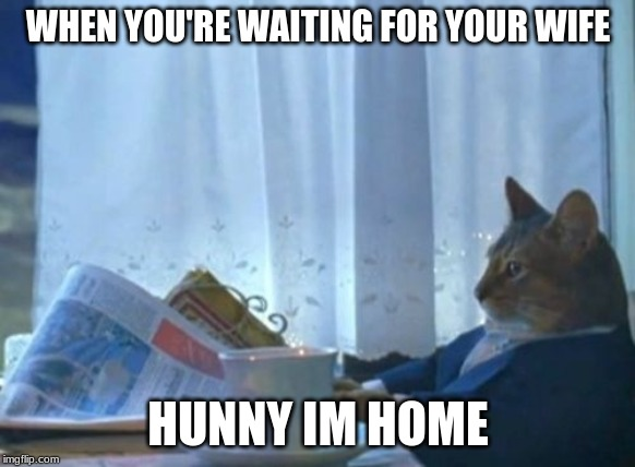 I Should Buy A Boat Cat | WHEN YOU'RE WAITING FOR YOUR WIFE HUNNY IM HOME | image tagged in memes,i should buy a boat cat | made w/ Imgflip meme maker