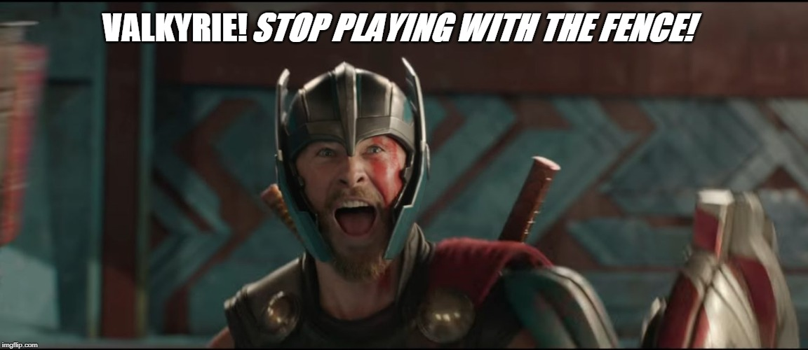 Thor Ragnarok Excited Meme | VALKYRIE! STOP PLAYING WITH THE FENCE! | image tagged in thor ragnarok excited meme | made w/ Imgflip meme maker