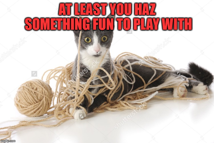 String | AT LEAST YOU HAZ SOMETHING FUN TO PLAY WITH | image tagged in string | made w/ Imgflip meme maker