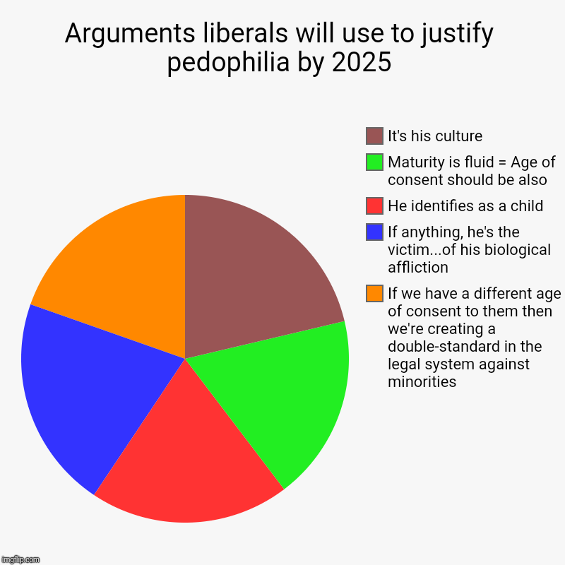 Arguments liberals will use to justify pedophilia by 2025 | If we have a different age of consent to them then we're creating a double-stand | image tagged in charts,pie charts | made w/ Imgflip chart maker
