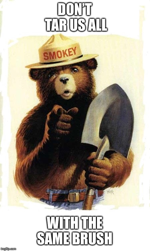 Smokey The Bear | DON'T TAR US ALL WITH THE SAME BRUSH | image tagged in smokey the bear | made w/ Imgflip meme maker