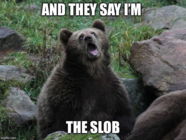 Sarcastic Bear | AND THEY SAY I'M THE SLOB | image tagged in sarcastic bear | made w/ Imgflip meme maker