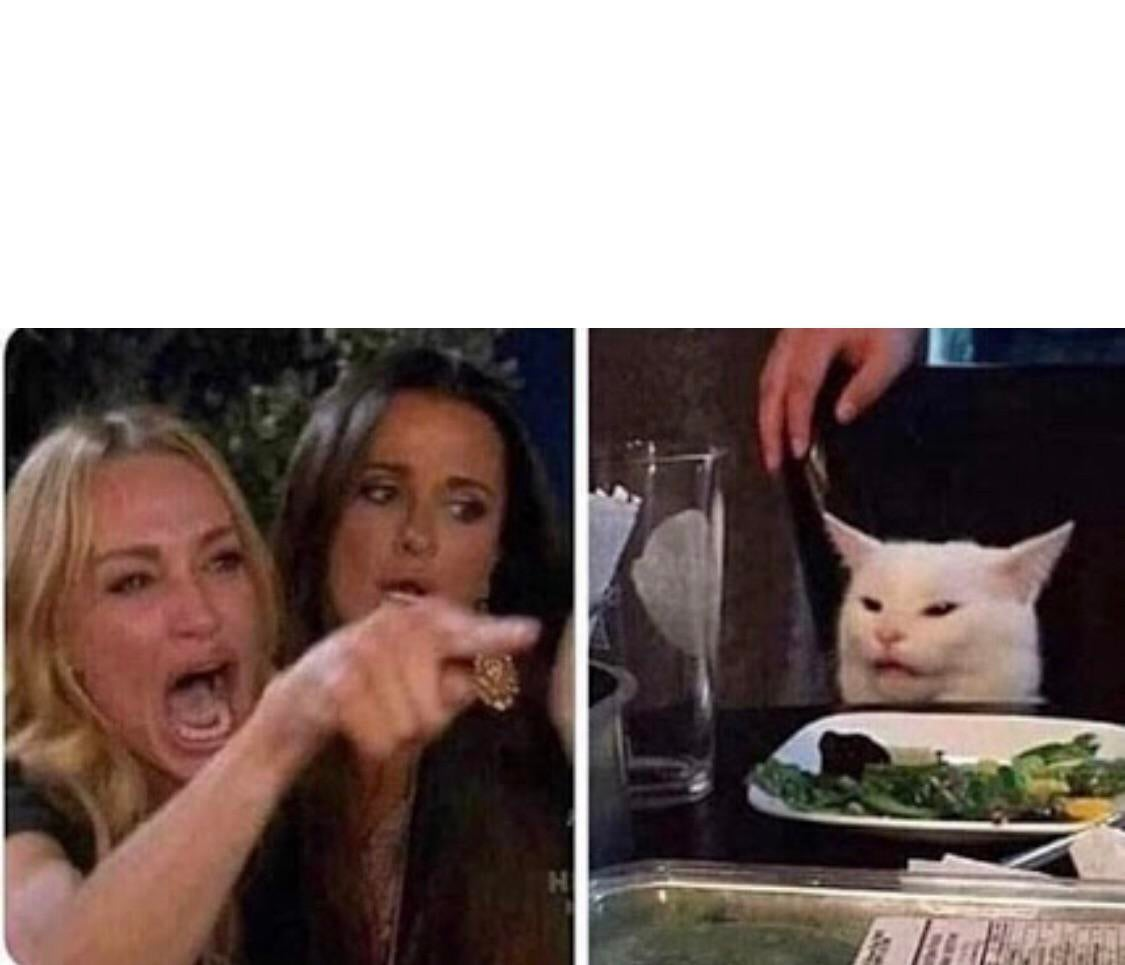 Woman Yelling At A Cat Meme Template Funny Picture