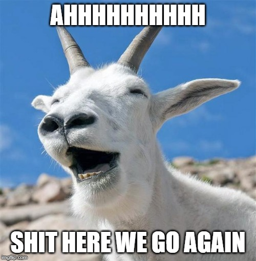 Laughing Goat |  AHHHHHHHHHH; SHIT HERE WE GO AGAIN | image tagged in memes,laughing goat | made w/ Imgflip meme maker