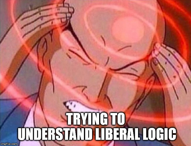 When a some moron is going about President Trump being racist. | TRYING TO UNDERSTAND LIBERAL LOGIC | image tagged in stupid liberals,democrats suck,clifton shepherd cliffshep,it's true | made w/ Imgflip meme maker