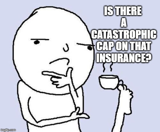 thinking meme | IS THERE A CATASTROPHIC CAP ON THAT INSURANCE? | image tagged in thinking meme | made w/ Imgflip meme maker