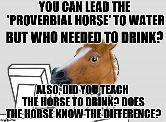 why did the horse not drink the water? | YOU CAN LEAD THE 'PROVERBIAL HORSE' TO WATER BUT WHO NEEDED TO DRINK? ALSO, DID YOU TEACH THE HORSE TO DRINK? DOES THE HORSE KNOW THE DIFFER | image tagged in memes,computer horse | made w/ Imgflip meme maker