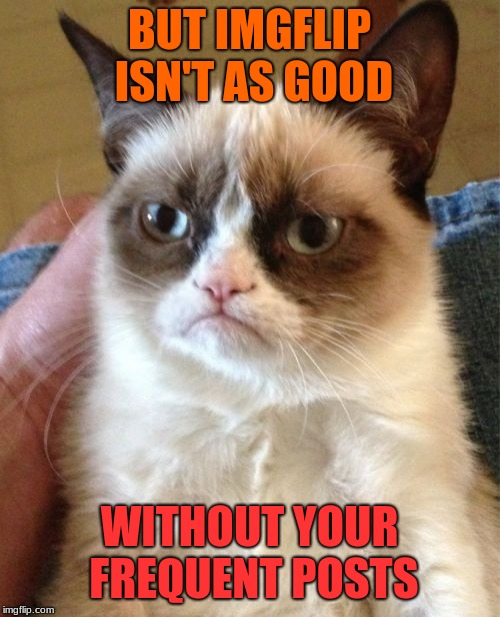 Grumpy Cat Meme | BUT IMGFLIP ISN'T AS GOOD WITHOUT YOUR FREQUENT POSTS | image tagged in memes,grumpy cat | made w/ Imgflip meme maker