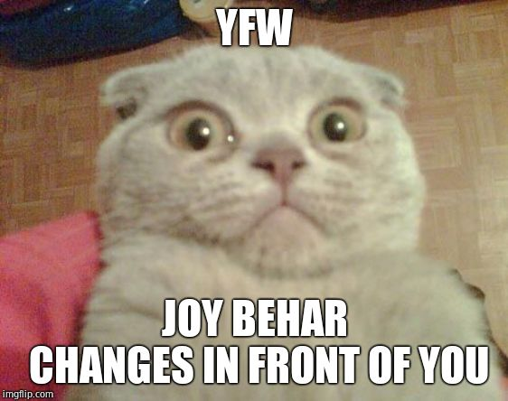 Gaaaaaaaahhhhhh!!!!! |  YFW; JOY BEHAR CHANGES IN FRONT OF YOU | image tagged in stunned cat,joy behar,horrible | made w/ Imgflip meme maker