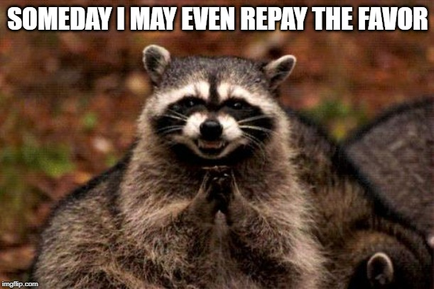 Evil Plotting Raccoon Meme | SOMEDAY I MAY EVEN REPAY THE FAVOR | image tagged in memes,evil plotting raccoon | made w/ Imgflip meme maker