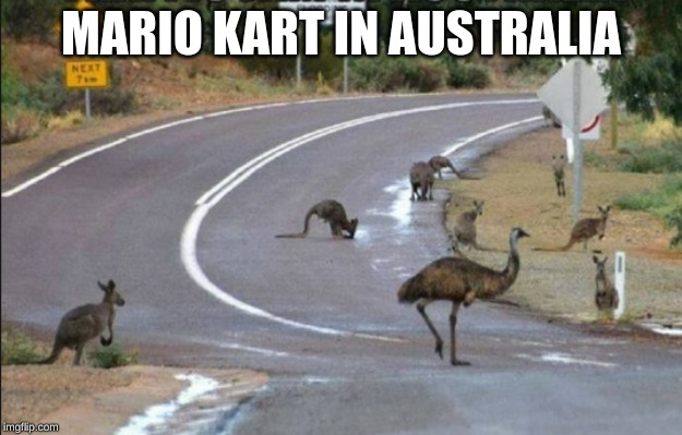 due to terrible internet speeds, Australians have to make their own fun. | MARIO KART IN AUSTRALIA | image tagged in mario kart,australia,kangaroo,emu,road,memes | made w/ Imgflip meme maker