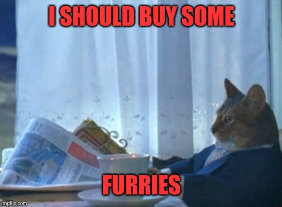 I Should Buy A Boat Cat Meme | I SHOULD BUY SOME FURRIES | image tagged in memes,i should buy a boat cat | made w/ Imgflip meme maker