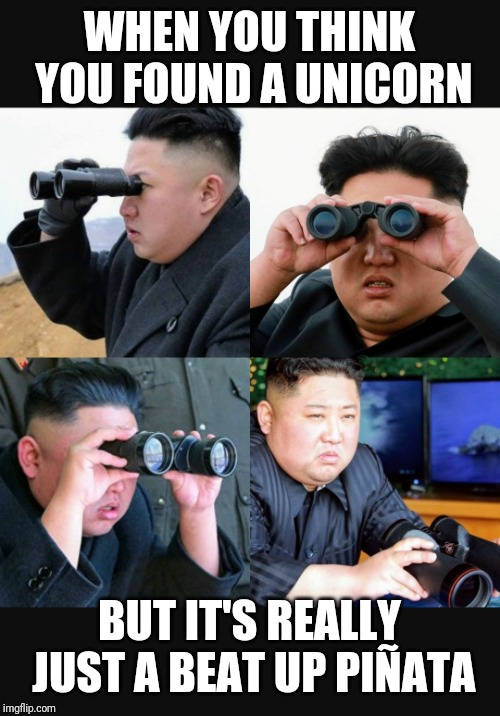 Oh Dear Leader! Not Again!! | WHEN YOU THINK YOU FOUND A UNICORN BUT IT'S REALLY JUST A BEAT UP PIÑATA | image tagged in unicorn,kim jong un sad,binoculars,relationships,north korea,pinata | made w/ Imgflip meme maker
