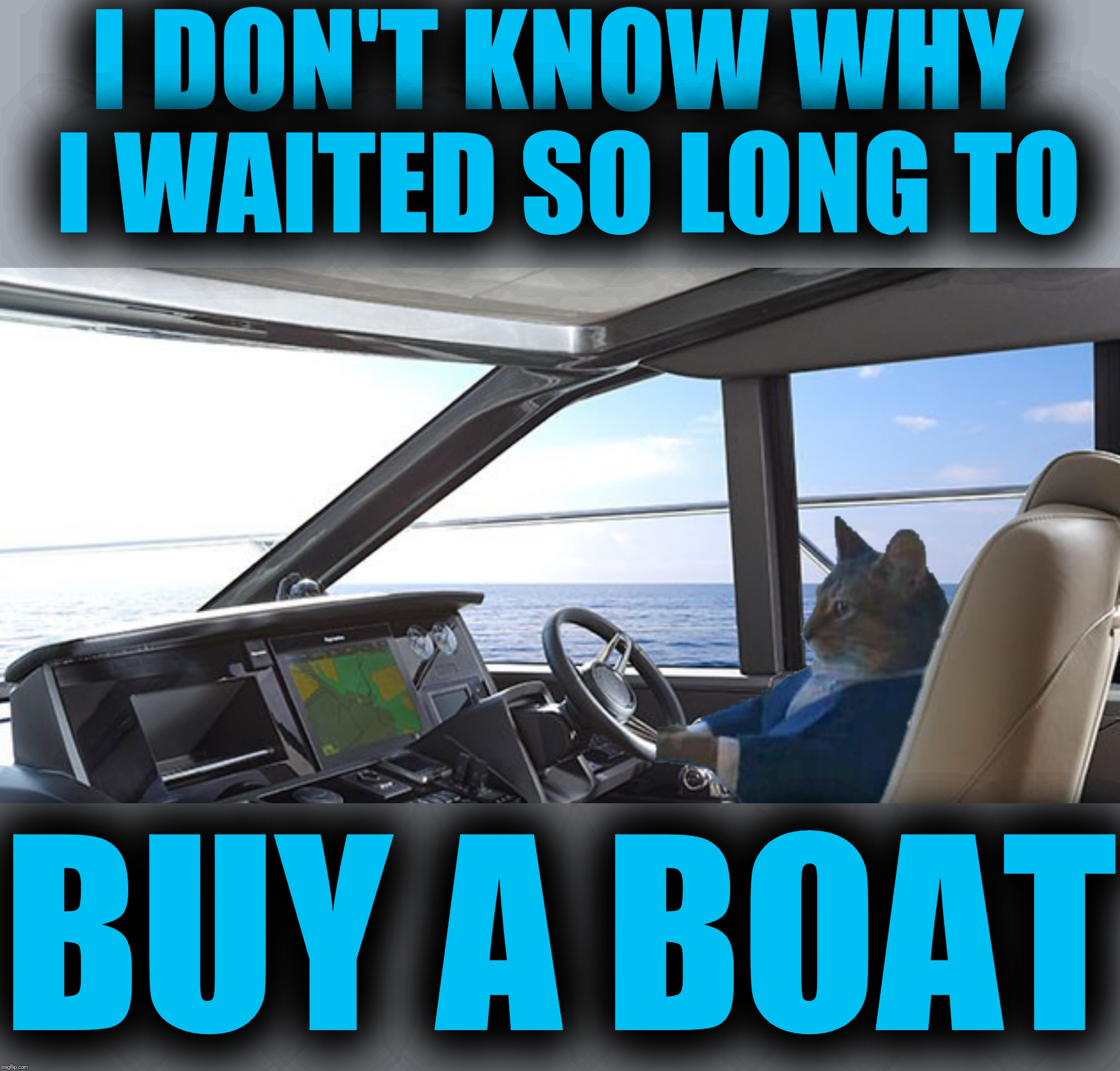 It's about time, he's been talking about it for years |  I DON'T KNOW WHY I WAITED SO LONG TO; BUY A BOAT | image tagged in i should buy a boat cat,it's about time,boating | made w/ Imgflip meme maker