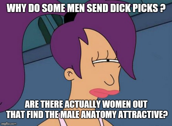 Maybe I'm just a prude? | WHY DO SOME MEN SEND DICK PICKS ? ARE THERE ACTUALLY WOMEN OUT THAT FIND THE MALE ANATOMY ATTRACTIVE? | image tagged in memes,futurama leela,no i don't want to see it,no just no | made w/ Imgflip meme maker