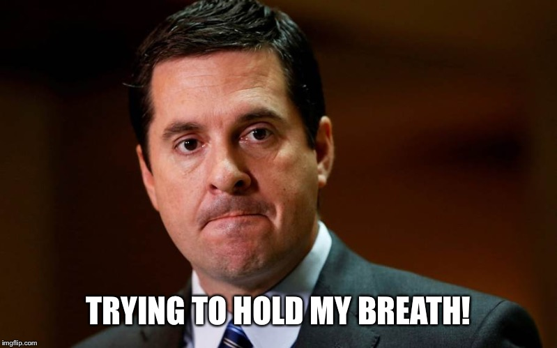 Devin Nunes | TRYING TO HOLD MY BREATH! | image tagged in devin nunes | made w/ Imgflip meme maker