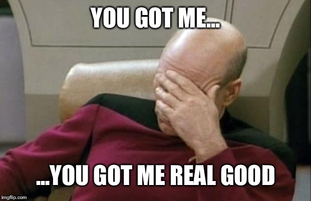 YOU GOT ME... ...YOU GOT ME REAL GOOD | image tagged in memes,captain picard facepalm | made w/ Imgflip meme maker