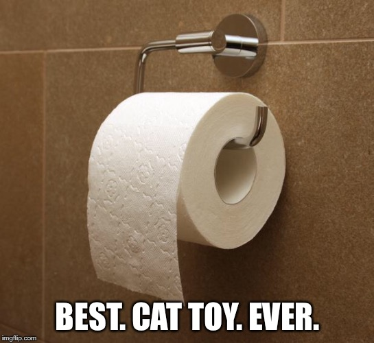Toilet Paper | BEST. CAT TOY. EVER. | image tagged in toilet paper | made w/ Imgflip meme maker