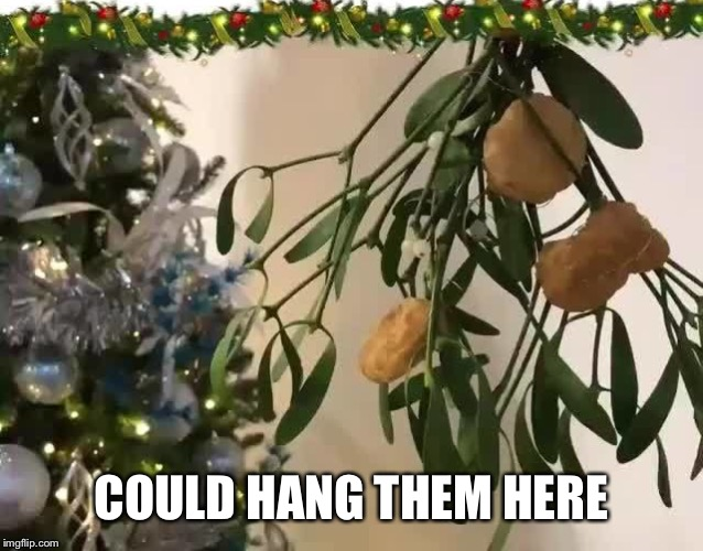 COULD HANG THEM HERE | made w/ Imgflip meme maker