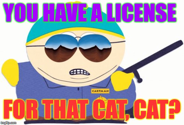 Officer Cartman Meme | YOU HAVE A LICENSE FOR THAT CAT, CAT? | image tagged in memes,officer cartman | made w/ Imgflip meme maker