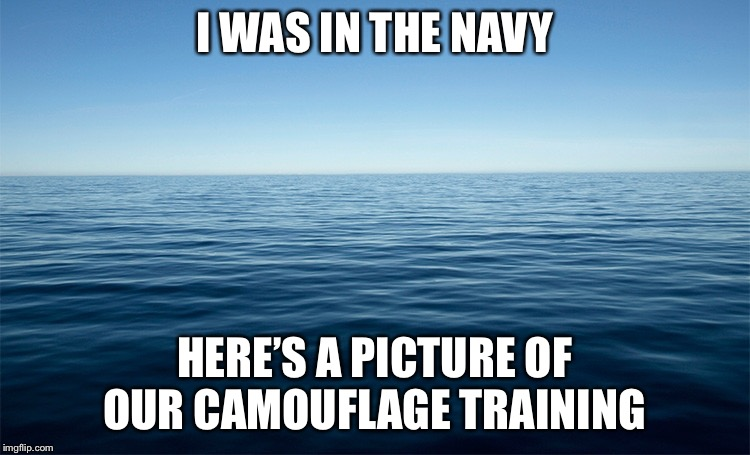 I WAS IN THE NAVY HERE'S A PICTURE OF OUR CAMOUFLAGE TRAINING | made w/ Imgflip meme maker