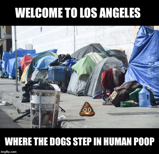 Time to revise their leash laws? | WELCOME TO LOS ANGELES WHERE THE DOGS STEP IN HUMAN POOP ? | image tagged in los angeles,homeless,dog,poop | made w/ Imgflip meme maker