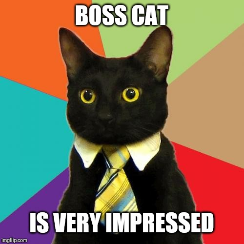 Business Cat | BOSS CAT IS VERY IMPRESSED | image tagged in memes,business cat | made w/ Imgflip meme maker