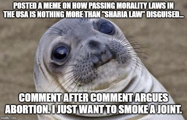 "Awkward Seal | POSTED A MEME ON HOW PASSING MORALITY LAWS IN THE USA IS NOTHING MORE THAN ""SHARIA LAW"" DISGUISED... COMMENT AFTER COMMENT ARGUES ABORTION.  
