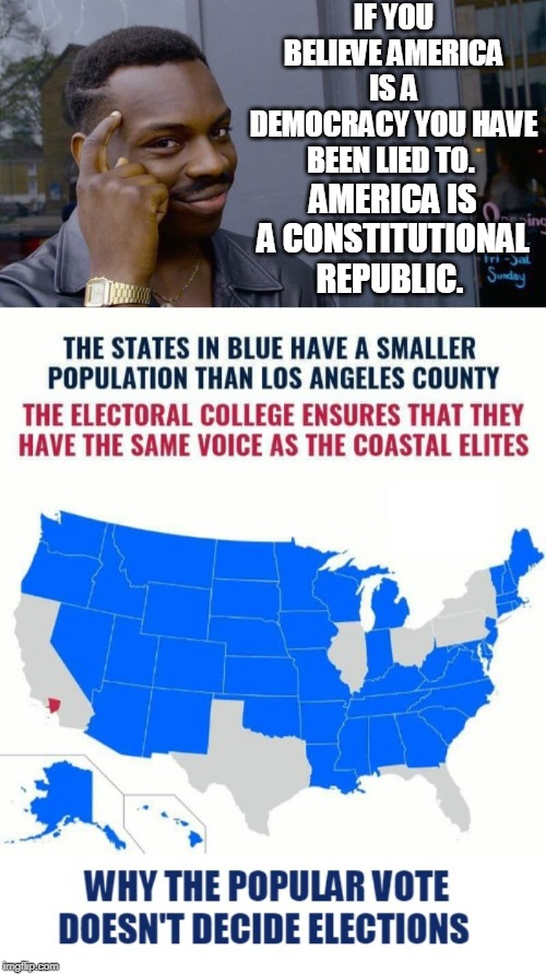 """tHe eLeCTorAL CoLLeGe is aNTi-DeMOcRaTic."" 